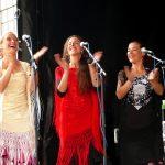 Flamenco stem