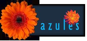 Azules | Aandacht voor de schoonheid van de muziek