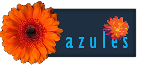 Azules | Flamencolessen dans, zang en ritme